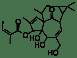 Chemical diagram of ingenol mebutate