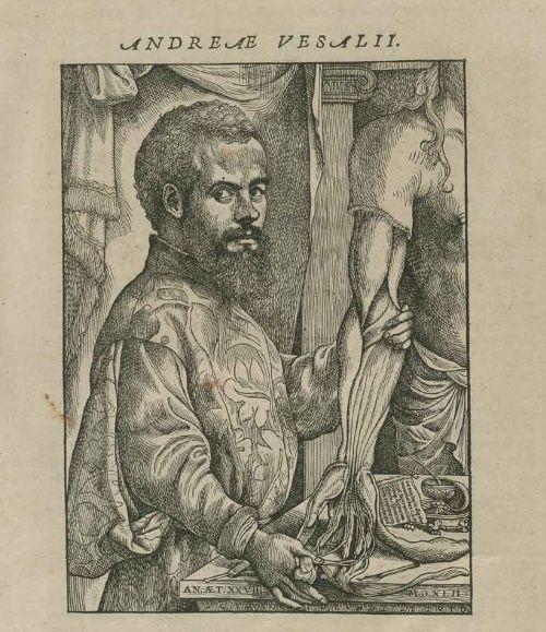 Portrait of Vesalius, De humani corporis fabrica.